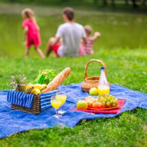 Family picnicking